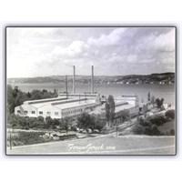 Türkiye'nin İlk Cam Üreticisi | Şişecam