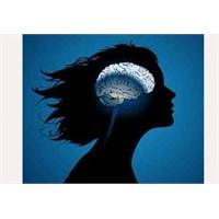 Kadin Beyni Erkek Beyni