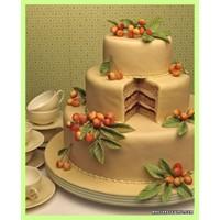 2012 Bahar Özel Düğün Pastaları