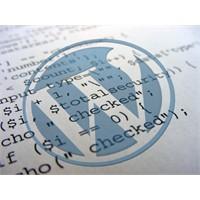 Wordpress Tema Yapımında Kullanılan Pratik Kodlar