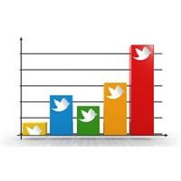 Online Amerikalı'ların %13'ü Twitter Kullanıyor