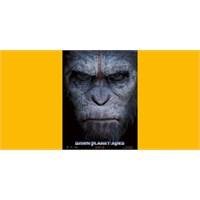 Maymunların Yeni Afişleri!