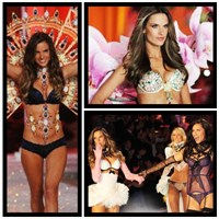 Victoria Secret's Angels 2012 - 2013