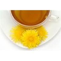 Karahindiba Çayı Kanseri Yendi!