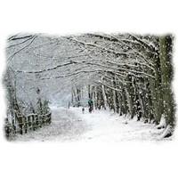 Karlı Yollarda Yürüme Sırları