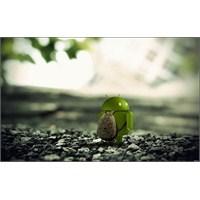 Larry Page Android'i Bir Kalemde Silmiş