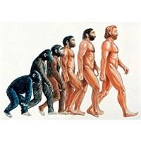İnsanın Evriminde Yeni Dönem