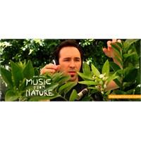 Doğadan Müzik