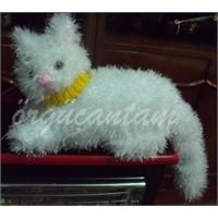 Tüylü Beyaz Kedi Ve Tüysüz Badem:))))