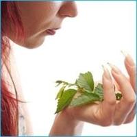 Bitkisel Papatya Çayı Ve Yosun Hapları Zehirleyebi
