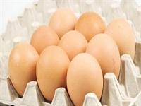 Yumurtayı Kırmadan Önce Yıkayın