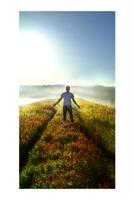 Doğanın Mucizeleri: Dikkat Toplama Teorisi