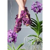 Çiçekli Ayakkabı Modası 2013