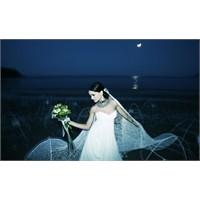 Evlilik Dünyası Fuarı 2012 Konsepti Doğa Gelinler