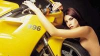 Standart Güzel Hatunlar Ve Güçlü Motorlar