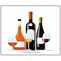 Alkolün Vücudumuza Etkileri