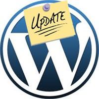 Wordpress Güncelleme Sorunu Çözümü!