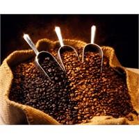 Kafein Bazal Metabolizmayı Hızlandırıyor