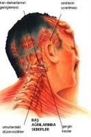 Migreni Tetikleyen Besinler Neler?
