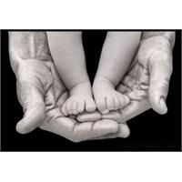 Babaların Hayatımızdaki Yeri Ve Önemi