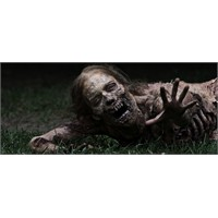 Walking Dead'in 3. Sezonuna Yeşil Işık