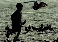 Çocukların Sosyalleşmesi