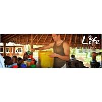 Gönüllü Çalışma Ve Tatil İçin Aile Kampları