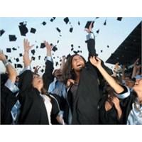 Üniversite Tipleri Ansiklopedisi