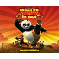 Kung Fu Panda 2 Film Eleştirisi