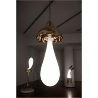 Wonderlamp Koleksiyonu
