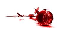 14 Şubat Sevgililer Günü Öyküsü....