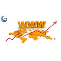 Web Sitesi Hit Artırmak İçin İp Uçları