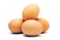 Yumurtaya Dair Her Şey Sil Baştan