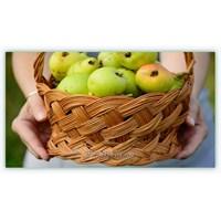 Sağlıklı Detoksun İlk Adımları