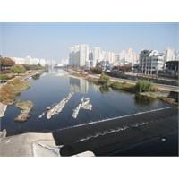 Güney Kore - Seri 3 : Daegu