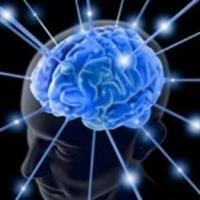 Tam Formunda Bir Beyin