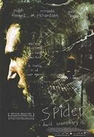 Spider (örümcek)