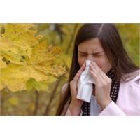 Sonbahar Hastalıklarını Tanıyalım
