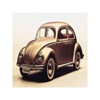 """Volkswagen Beetle """"Vos-vos"""""""