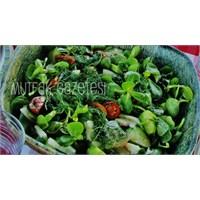 """""""Semizotu Salatası-bahçeden"""""""