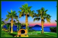 Ege de Bir Tatil İlçesi: Bodrum (muğla)