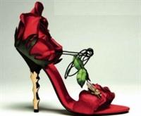 Ayakkabı Seçimi Nasıl Yapılır