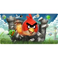 Angry Birds Film Mi Oluyor ?