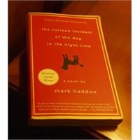 Mark Haddon Ve Harika Kitabı Sizi Ağlatacak!