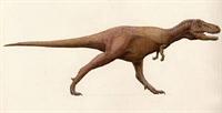 Güneyde De Tyrannosaur Varmış
