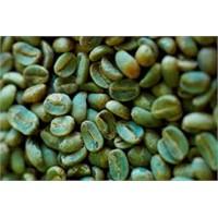 Zayıflamada Yeni Bir Moda; Yeşil Kahve