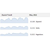 Google Analytics Aylık Ziyaret Grafiği