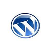Web Tasarım Firmaları Artık Wordpress Kullanıyor