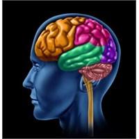 Beyninizi Öldüren Gıdalar...