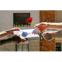 Güller Aşk İçin, Kitaplar Sonsuza Kadar